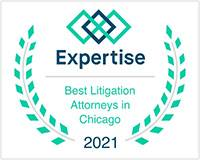 expertise_litigation_2021